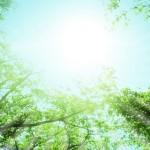 心が晴れ渡る、平穏な人生を生きるための4つの心構え